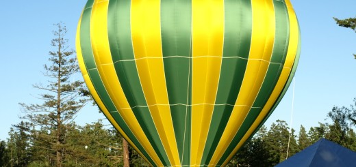 maple valley days hot air balloon